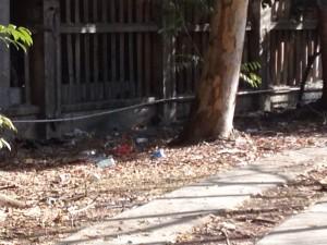 Vecinos piden que todos colaboren con el tema de la basura.