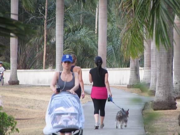Salir a  pasear al aire libre debe ser una actividad controlada. Se recomienda usar repelente y mosquiteros en los coches | Foto: Aydana Ruiz