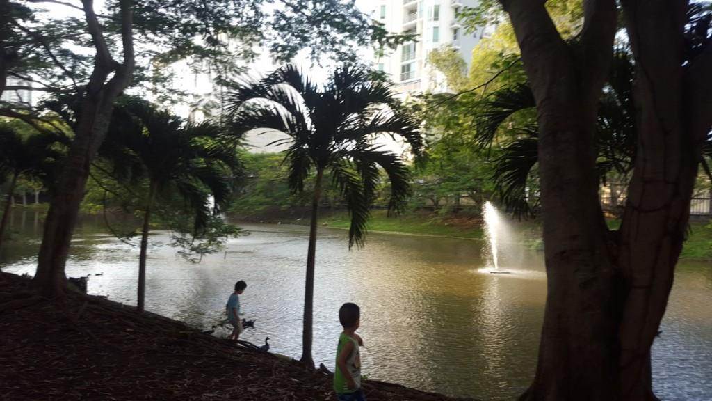 El mantenimiento de la laguna, así como del resto del parque es asumido por sus propietarios   Foto: AR