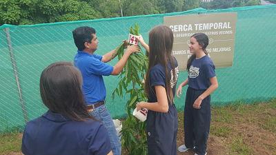 Pinos hindú y Guayacanes fueron los árboles sembrados por los eestudiantes de la AIP | Foto: CDE News