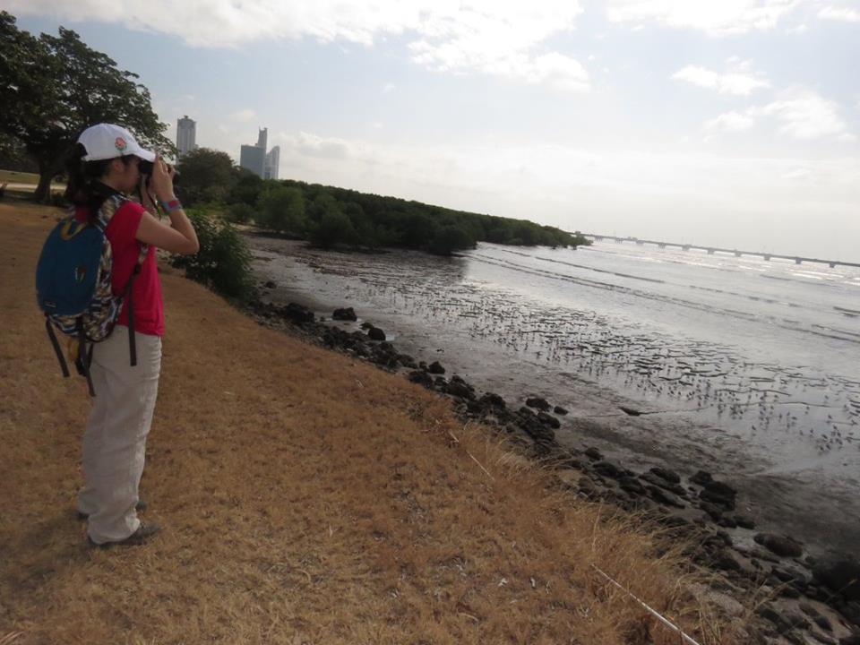 Decenas de estudiosos del comportamiento de las aves visitan CDE para observarlas de cerca.