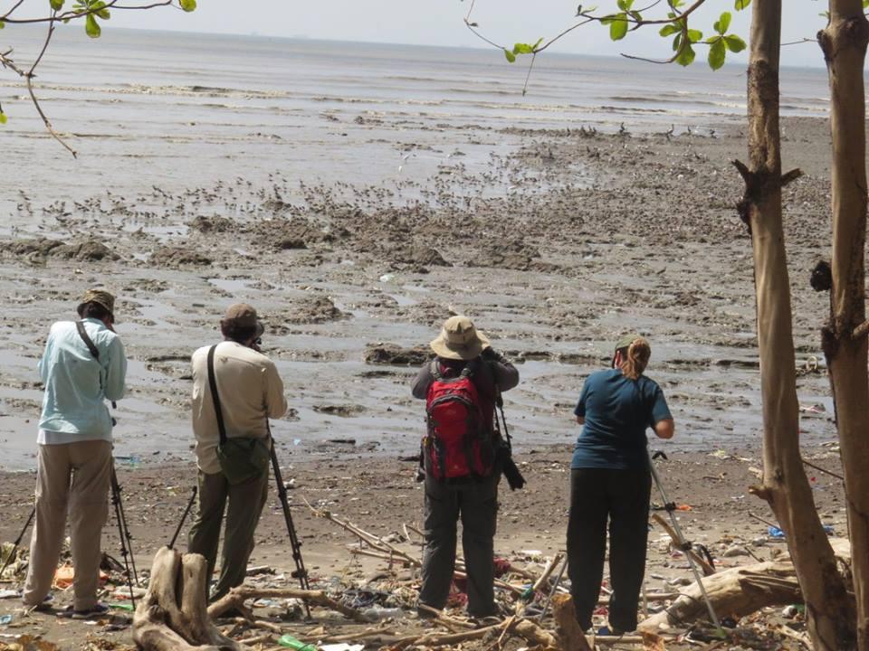 Ahora contarán con un lugar adecuado para hacer la observación en Costa del Este.