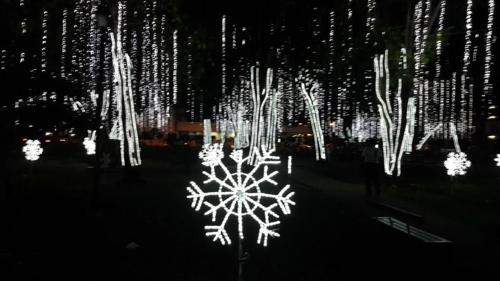 Ya la Alcaldía de Panamá inició la colocación y prueba de luces que iluminarán la Navidad capitalina   Foto: Octavio Quirós